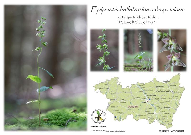 Cartographie des Vosges 15_hel10