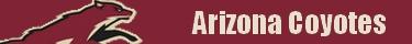 Forumactif.com : Hockey pour les fans Arizon10