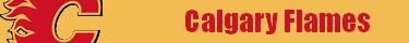Forumactif.com : Hockey pour les fans Calgar10