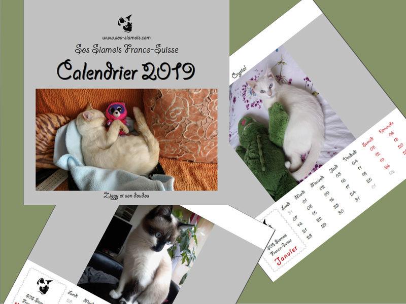 Le calendrier 2019 : la campagne photos est ouverte ! Captur23