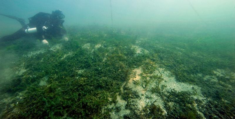 plongée en Salamandre et OXY-NG _dsc2011