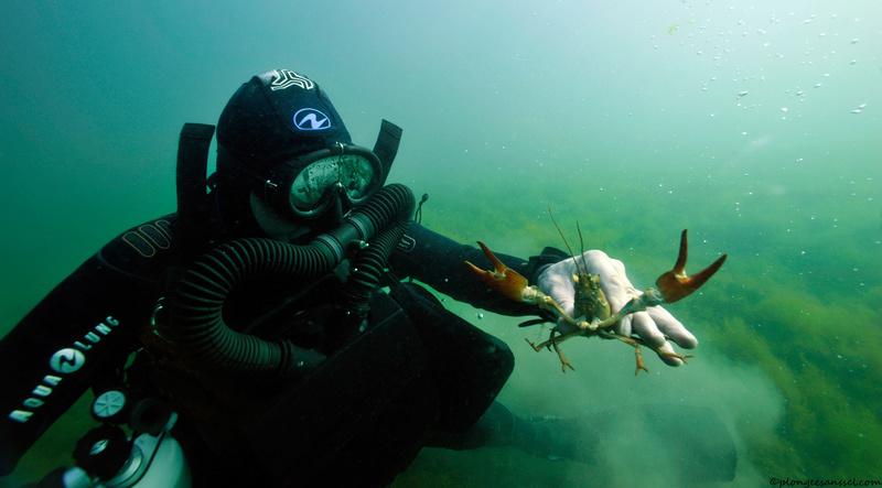 plongée en Salamandre et OXY-NG _dsc2012