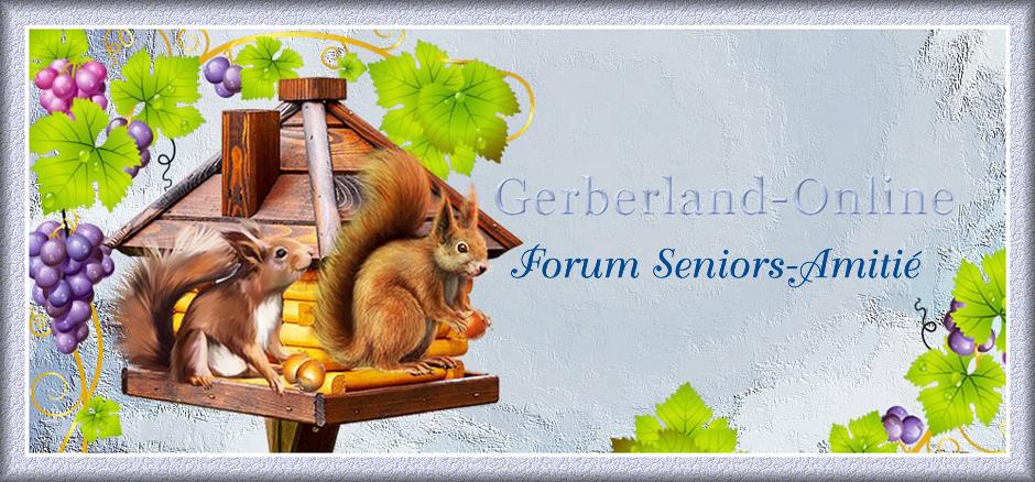 Gerberland-Online Forum Seniors Amitié