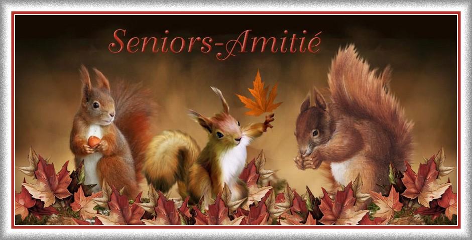 Forum Seniors Amitié