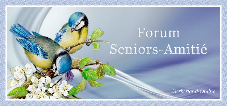 Forum Seniors-Amitié