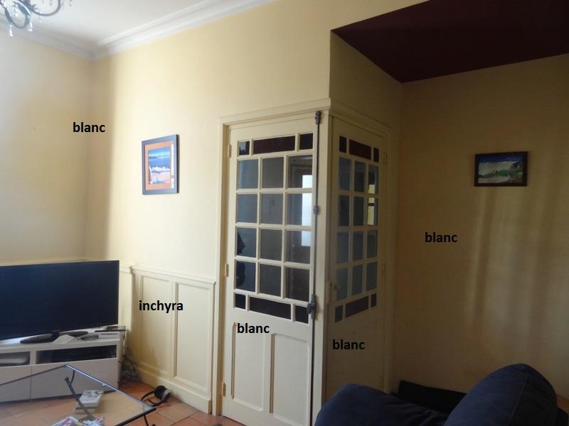 couleur de peinture pour notre séjour-salon ? Salona11