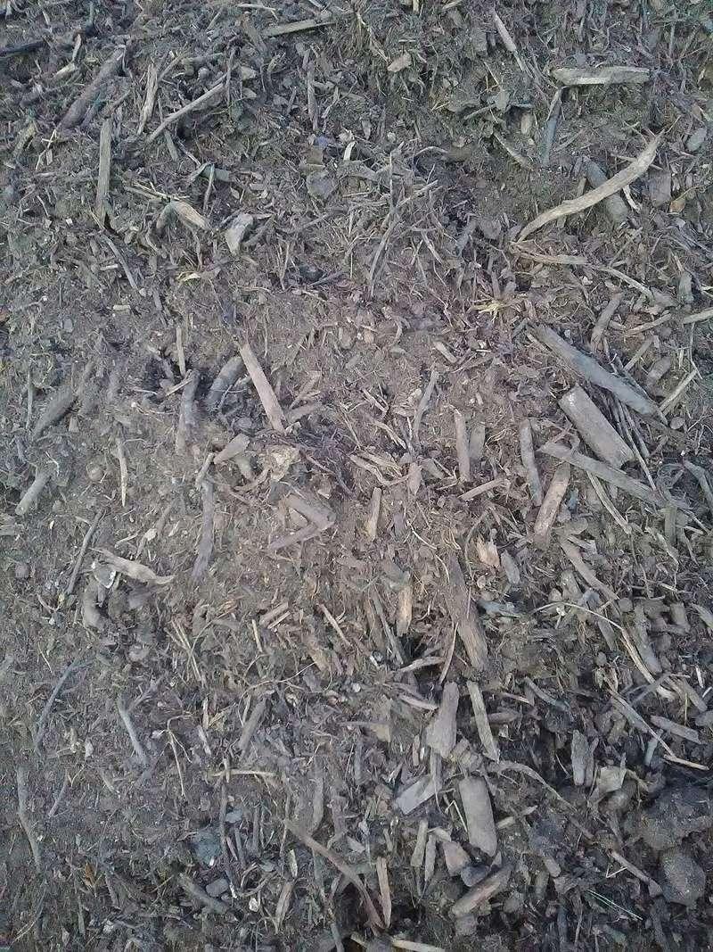 Semis de céréales à la volée - Page 9 Img_2053