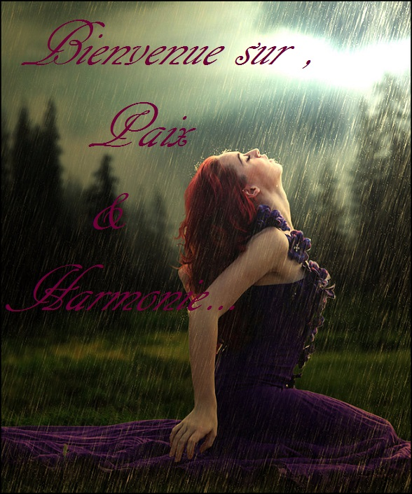 Petit bonjour Kiss_t10