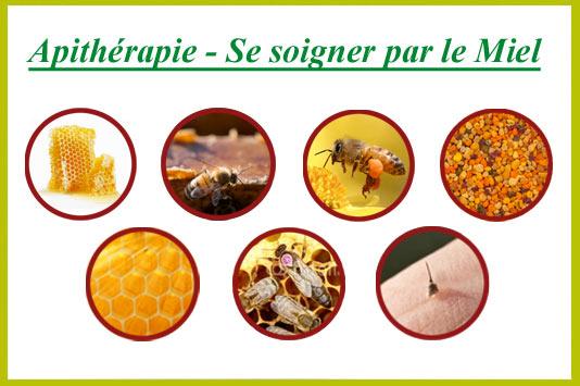 L'apithérapie, les bienfaits du miel au service de la santé Remede10