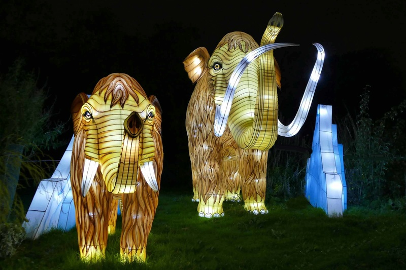 illuminations au jardin des plantes Illumi12