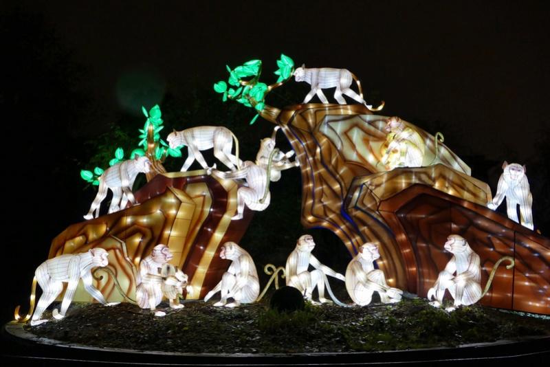 illuminations au jardin des plantes Illumi14