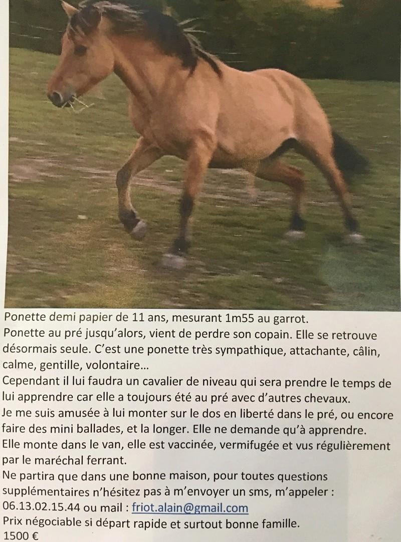 ponette 11ans Img_0011
