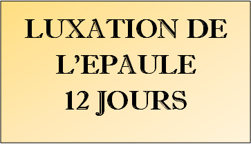 Toulouse Football Club 12_lux10