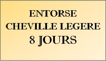 Toulouse Football Club 8_ento10
