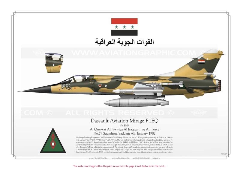 Mirage F1EQ Irak [Special Hobby 1/72] F1eq1_10