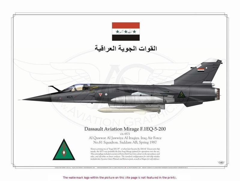 Mirage F1EQ Irak [Special Hobby 1/72] F1eq5_10