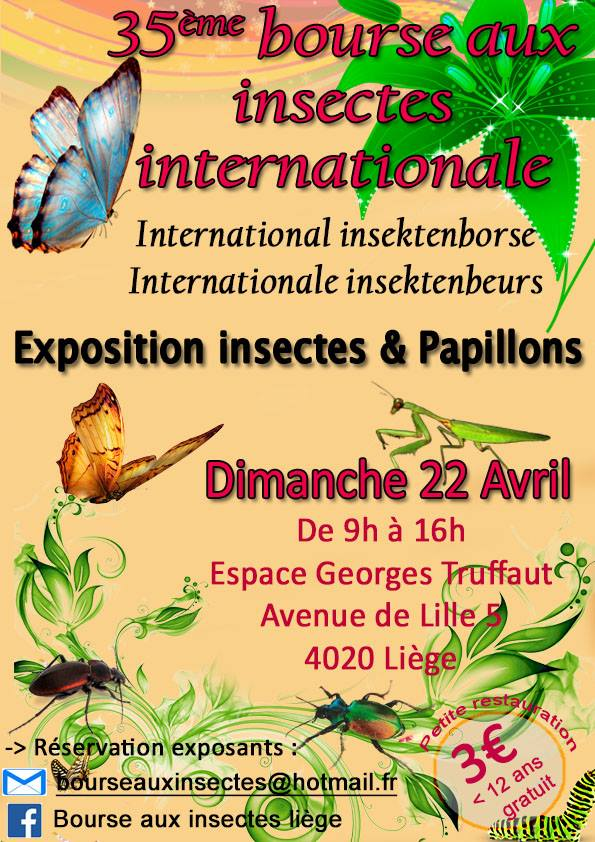Bourse aux insectes de Liège-Droixhe 2018 26231710
