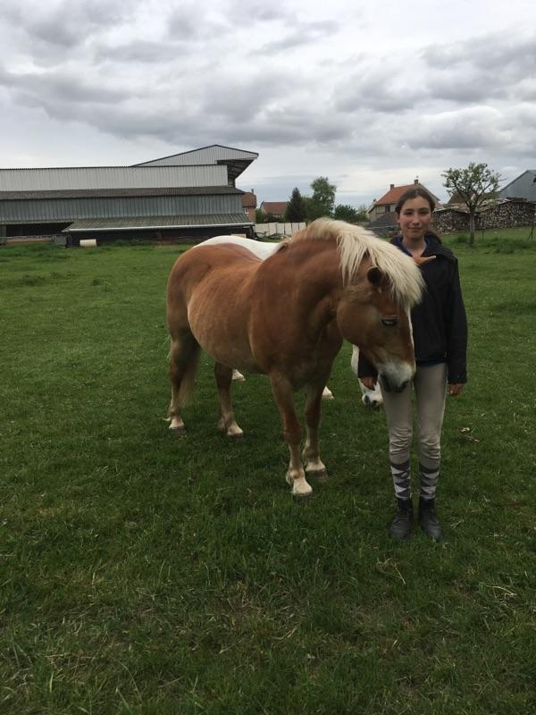 ISA ESPERANCE - poney Haflinger née en 1996 - adoptée en juillet 2017 par sonia et Olivier 18042911