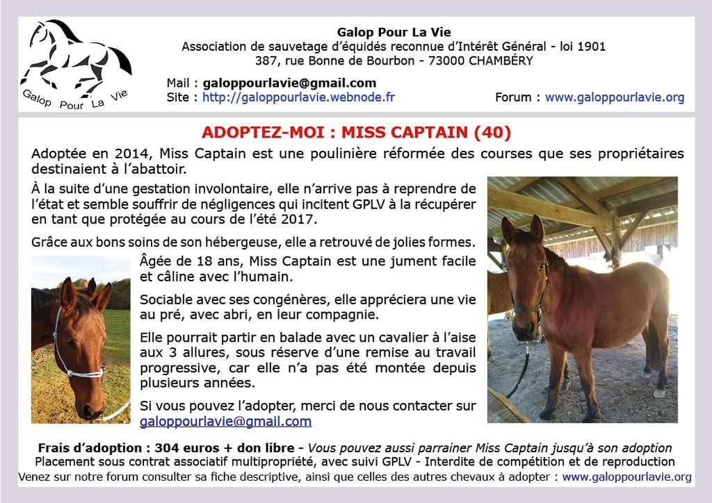 MISS CAPTAIN - TF née en 2000 - Adoptée en août 2018 par Morgane Affich66