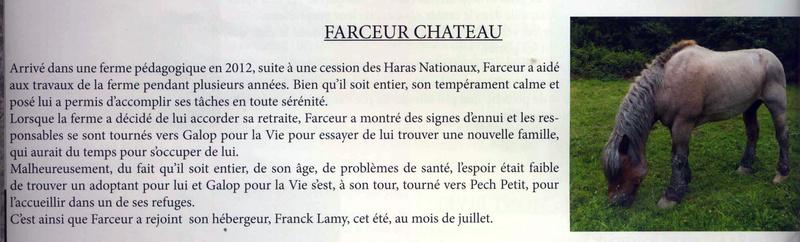 FARCEUR CHATEAU - Trait Ardennais entier né en 1995 - accueilli en juillet 2017 chez Pech-Petit - DCD en mai 2018 Farceu10