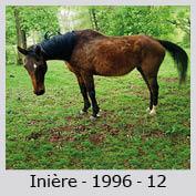 Galop Pour La Vie Iniyre11