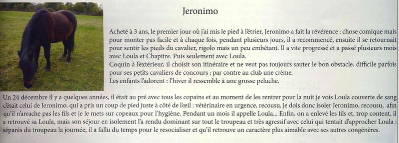JERONIMO - OI Poney né en 1998 - accueilli chez Pech-Petit en septembre 2017   Jeroni10