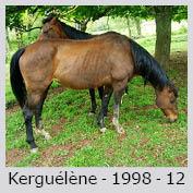 Galop Pour La Vie Kergue10