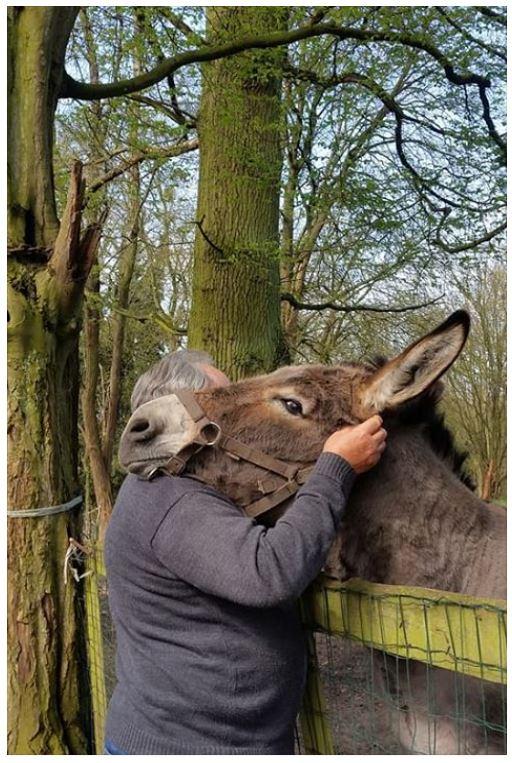 SAMARA - TF née en 2006 (DCD janvier 2019)  et OSCAR - âne né en 2003 - adoptés en mars 2012 par Maxime Oscar410