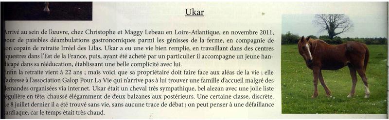 UKAR - ONC selle né en 1986 - accueilli en novembre 2011 chez Pech Petit - Page 2 Ukar11