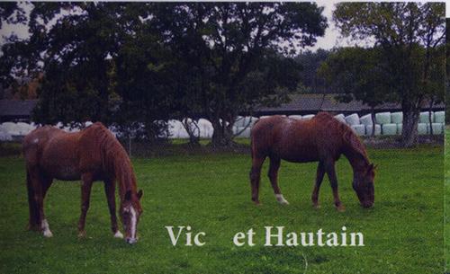 VICC - TF né en 1987 - accueilli en avril 2015 chez Pech-Petit  Vichau10