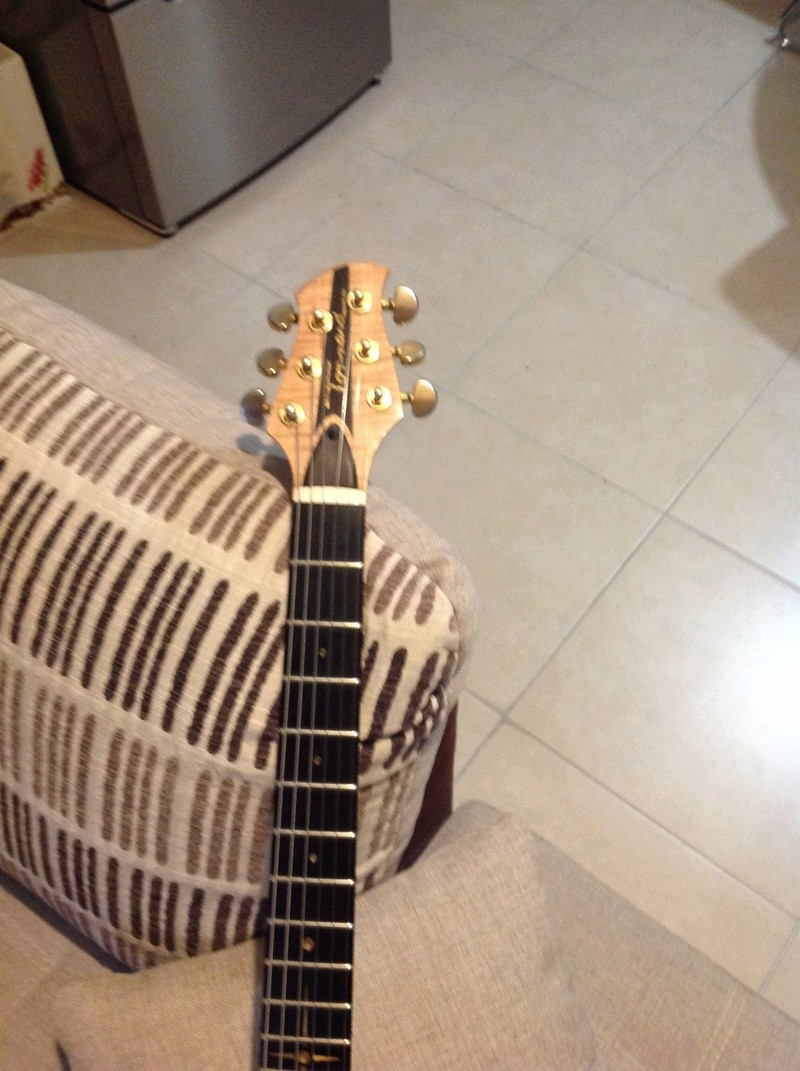Mes guitares Img_0413