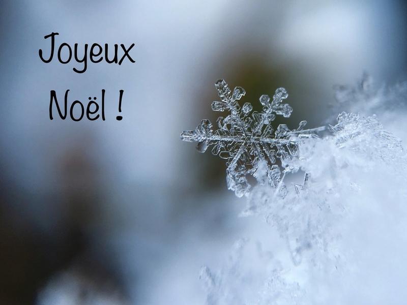 Noël et mes meilleurs vœux à tous les membres de ce Joyeux Forum A9da1c10
