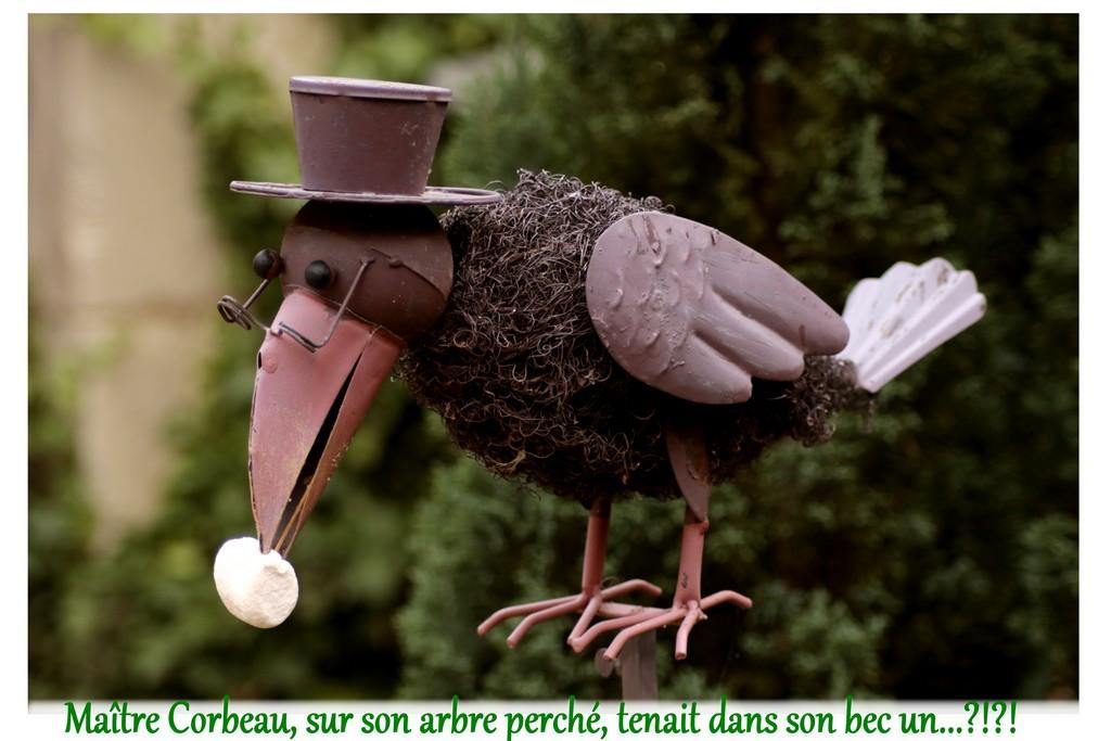 """Concours photo du mois de mai 2018 - Thème """"sublimer des chamallows ou marshmallows"""" (terminé) Img_0014"""