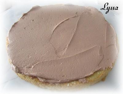 Gâteau de fête, glaçage au nutella Gateau10
