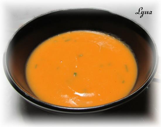 Potage aux carottes Portag10