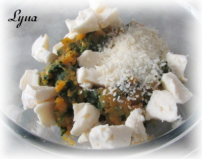 Ravioli à la courge butternut et brie Raviol12
