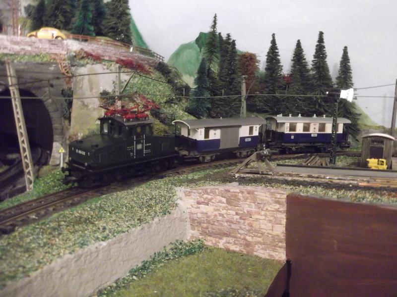 Phantasie-Personenzug im alpenländischer Umgebung Dscf3511