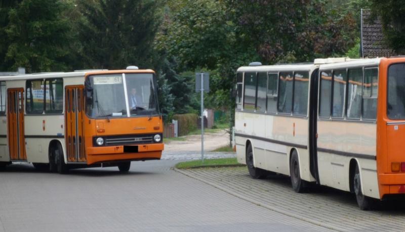 Ikarus 280.02 von Vector-Models 26028010