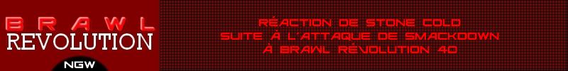 BRAWL Révolution 41 110