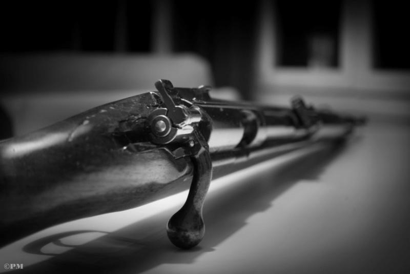 Précision sur la Mauser dsm34 Dsc02610