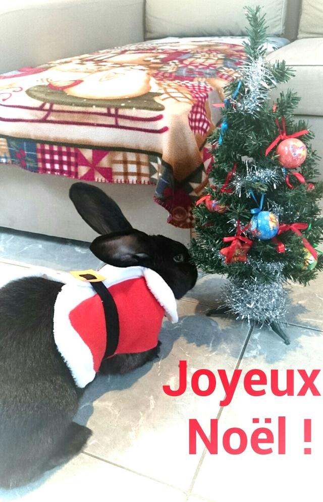 Père-Noël Surprise 2017 - Inscriptions closes : à vous de jouer - Img_2017