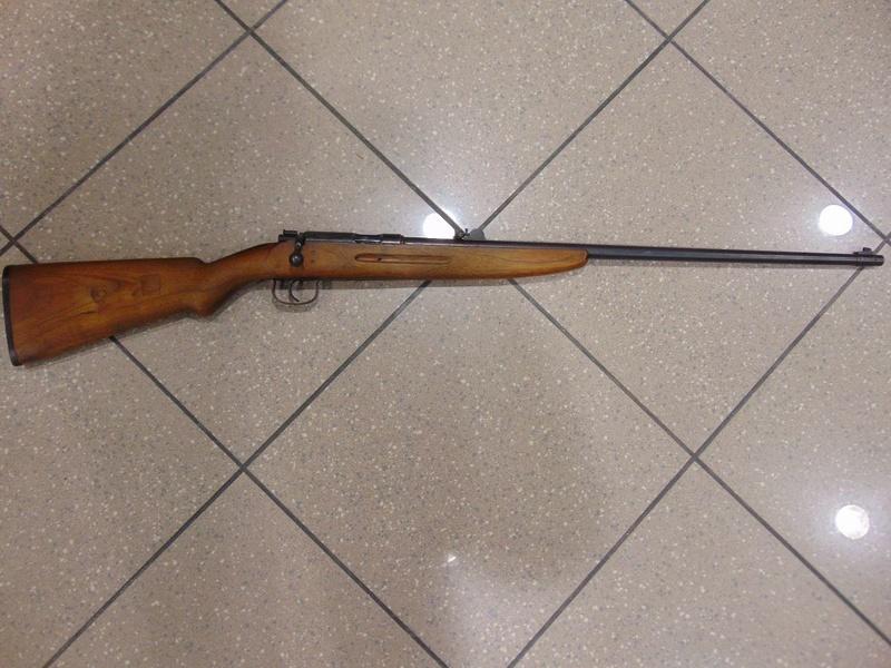 carabine 22lr sportmodell Dsc01410