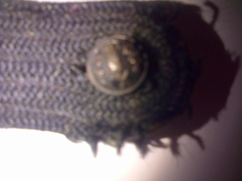 Authentification épaulette trèfle noire avec deux boutons régime de Vichy Img-2048