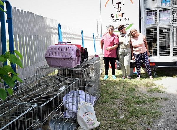 Stérilisation animaux errants à AKSAKOVO - 30 mai au 8 juin 2018 Aksako14