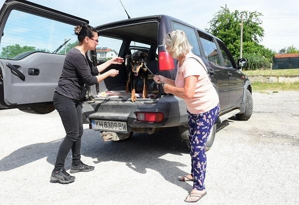 Stérilisation animaux errants à AKSAKOVO - 30 mai au 8 juin 2018 Aksako16