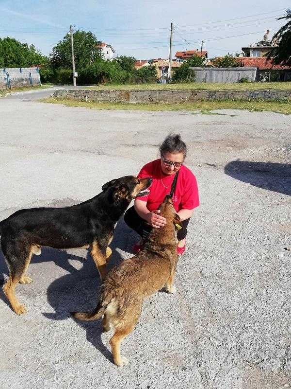 Stérilisation animaux errants à AKSAKOVO - 30 mai au 8 juin 2018 Aksako30