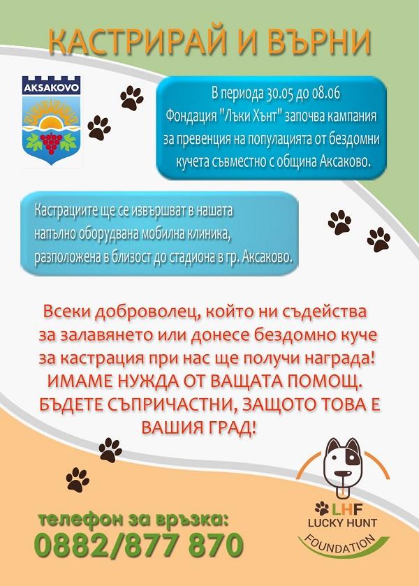Stérilisation animaux errants à AKSAKOVO - 30 mai au 8 juin 2018 Aksako37