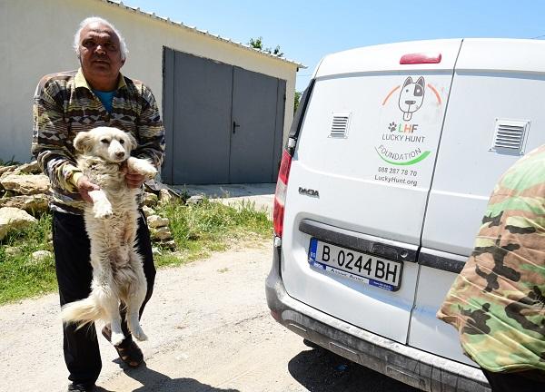 Stérilisation animaux errants à AKSAKOVO - 30 mai au 8 juin 2018 Aksalo11
