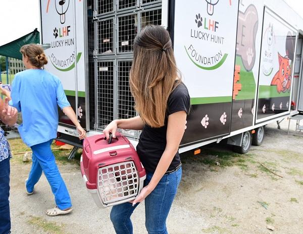 Stérilisation animaux errants à AKSAKOVO - 30 mai au 8 juin 2018 Aksalo13