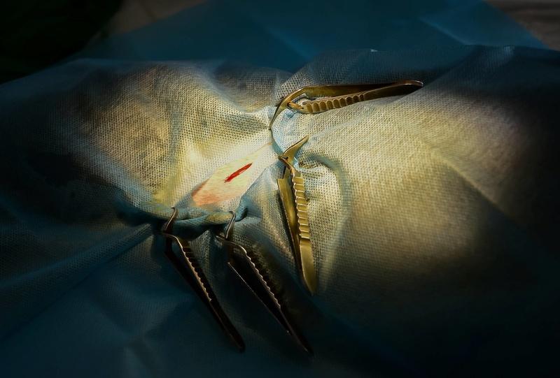 Campagne de stérilisation des chiens errants - PROVADIA - avril 2018 Bg_18_12